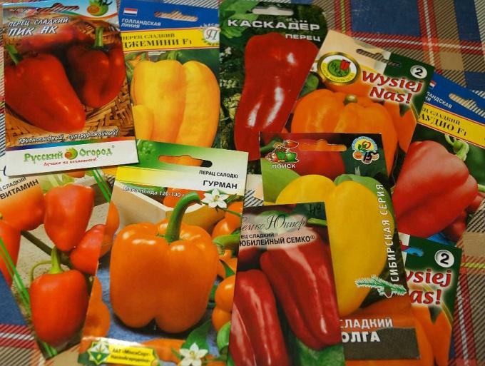 Выбираем семена болгарского перца перец болгарский выращивание в открытом грунте фото и видео
