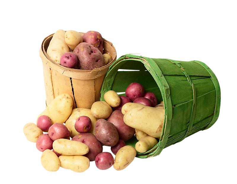 Нематода картофеля как бороться