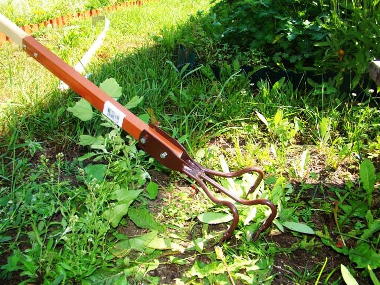 как избавиться от сорняков в огороде своими руками фото